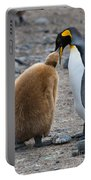 King Penguins Portable Battery Charger