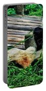 3722-panda -  Acanthus Sl Portable Battery Charger