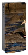 Adult Nz Yellow-eyed Penguin Or Hoiho On Shore Portable Battery Charger
