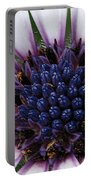 African Daisy Named Soprano White Portable Battery Charger