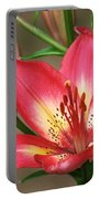 Arsenal Lily Portable Battery Charger