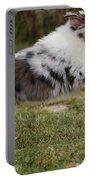 Australian Shepherd Puppy Portable Battery Charger