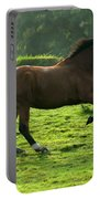 Bay Horse Portable Battery Charger