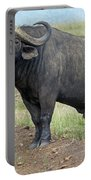 Cape Buffalo Portable Battery Charger