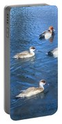 4 Duck Pond Portable Battery Charger