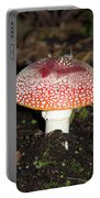 Fairy Mushrooms Portable Battery Charger