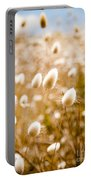 Golden Field Portable Battery Charger