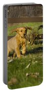 Golden Retriever Pup Portable Battery Charger