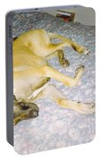 Great Dane And Calico Cat Portable Battery Charger