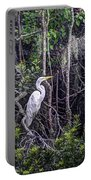 Heron Colors Portable Battery Charger