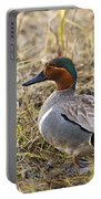 Greenwing Teal Portable Battery Charger