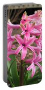 Hyacinth Named Pink Pearl Portable Battery Charger
