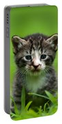 Kitty In Grass Portable Battery Charger
