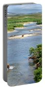 4-lay Of The Land Many Grizzly Bears In Moraine River In Katmai National Portable Battery Charger