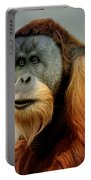 Orang Utan Portable Battery Charger