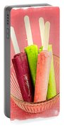Popsicles Ice Cream Frozen Treat Portable Battery Charger