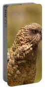 Portrait Of Nz Alpine Parrot Kea Nestor Notabilis Portable Battery Charger