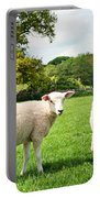 Sheep In Field Portable Battery Charger
