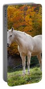 White Horse In Autumn Portable Battery Charger