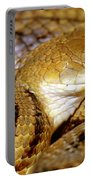 Yellow Rat Snake Portable Battery Charger