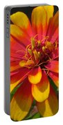 Zinnia Named Swizzle Scarlet And Yellow Portable Battery Charger