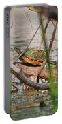 42- Florida Red-bellied Turtle Portable Battery Charger