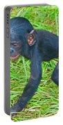 Bonobo Baby Portable Battery Charger