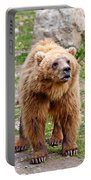 Brown Bear Portable Battery Charger
