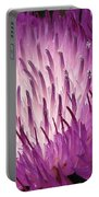 Centaurea From The Sweet Sultan Mix Portable Battery Charger