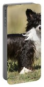 Chinese Crested Dog Portable Battery Charger