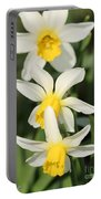 Cyclamineus Daffodil Named Jack Snipe Portable Battery Charger