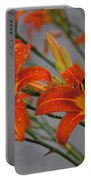 Day Lilly Portable Battery Charger