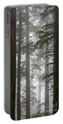 Foggy Coast Redwood Forest Portable Battery Charger