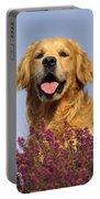 Golden Retriever Dog Portable Battery Charger