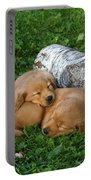 Golden Retriever Puppies Portable Battery Charger by Linda Freshwaters Arndt
