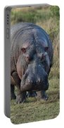 Hippopotamus Portable Battery Charger