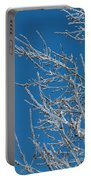 Ice Storm Poplars Portable Battery Charger