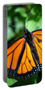 Monarch Danaus Plexippus Portable Battery Charger