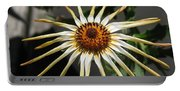 Osteospermum Named African Moon Portable Battery Charger