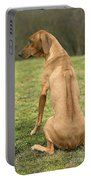 Rhodesian Ridgeback Portable Battery Charger
