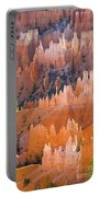 Sandstone Hoodoos In Bryce Canyon  Portable Battery Charger