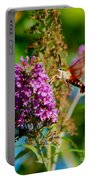 Snowberry Clearwing Hummingbird Moth Portable Battery Charger