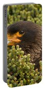 Striated Caracara Portable Battery Charger