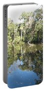 Swamp Reflection Portable Battery Charger