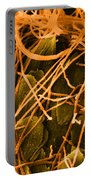 Trichophyton Fungus, Sem Portable Battery Charger