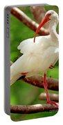 White Ibis Eudocimus Albus Portable Battery Charger