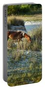 Wild Spanish Mustang Portable Battery Charger