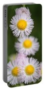 Wildflower Named Robin's Plantain Portable Battery Charger