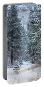 Winter In Pike National Forest Portable Battery Charger