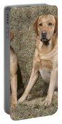 Yellow Labrador Retrievers Portable Battery Charger